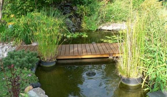 Fabriquer un bassin de jardin - Fabriquer un bassin exterieur rouen ...